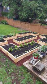 Garden - After