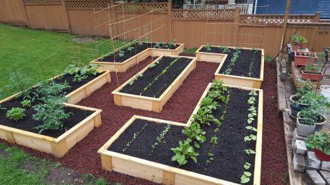 Garden - After 2