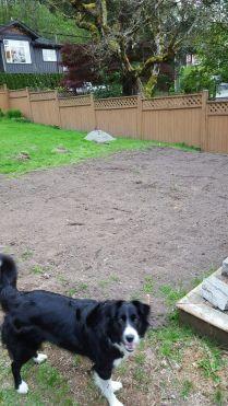 Garden - levelled