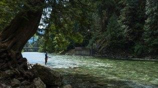 Chehalis River fishing