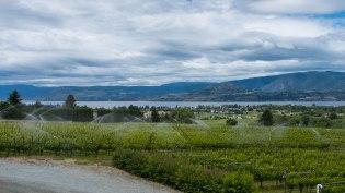 Kelowna Tantalus winery