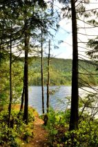 Hicks Lake